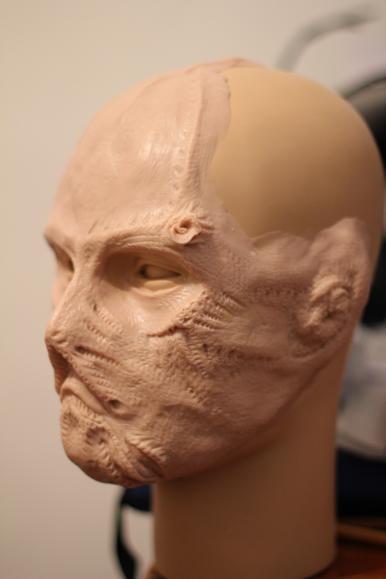 Medul-face-1