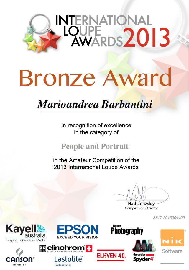 bronze-awards-2013